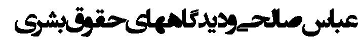 abbas-salehi-4